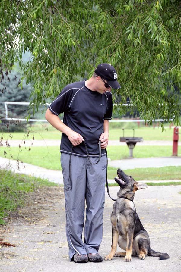 Dog Training Boot Camp