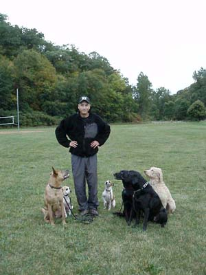 Josiah Neuman with pack of boot camp training dogs at state park